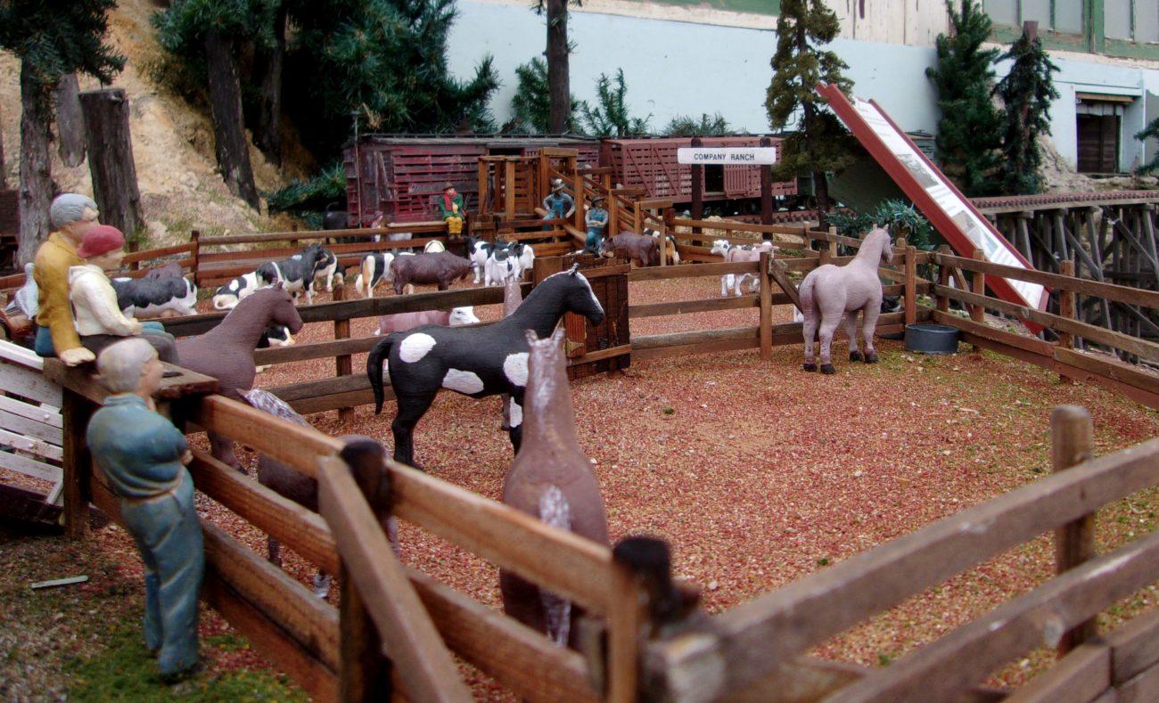Loading corrals at Company Ranch