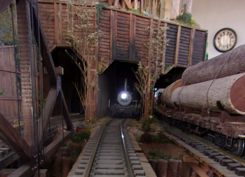Consists passing in Tunnel #2